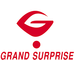 Logo Classe Grand Surprise